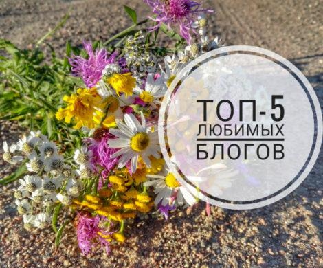 топ блоги